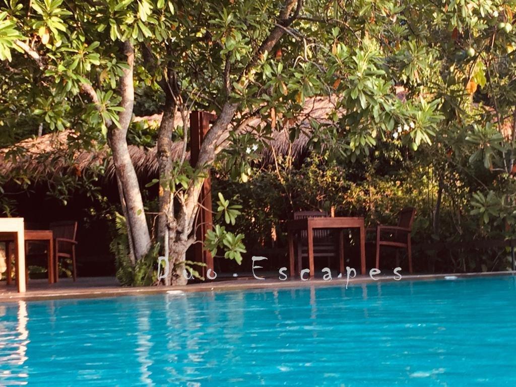 Main Pool, Jetwing Kurulubedda