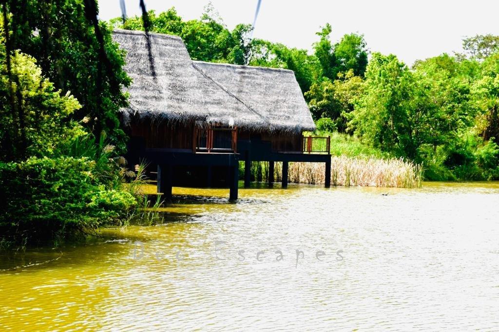 Water Dwelling, Vil Uyana